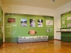 sala-verde1