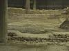 botteghe-e-edifici-romani16